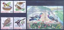 MD 2010- BIRDS, MOLDAVIA, 4v, MNH - Moldavie