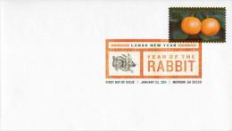 "Env. PJ Avec Timbre ""2011 Année Du Lapin"" Oblit. PJ  Morrow 22/01/2011 - 2011-..."