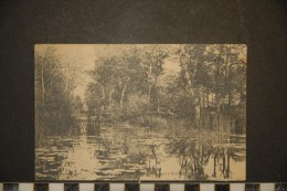 CP, 49, Au Pays D'anjou Le Layon à Rablay 1906 - Angers