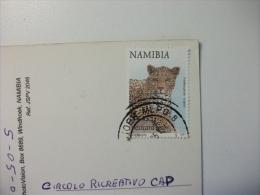 STORIA POSTALE FRANCOBOLLO Leopardo Namibia Namib Desert Series Sossus Vlei Invirons Namibia - Namibia