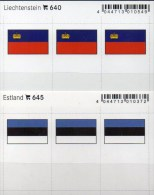 In Farbe 2x3 Flaggen-Sticker FL+Estland 4€ Kennzeichnung Alben Karten Sammlung LINDNER 640+645 Flags Eesti Liechtenstein - Zubehör