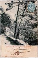 Gorges De La Restonica (Corse) (précurseur) - Non Classés