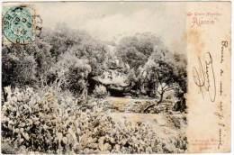 Ajaccio - La Grotte Napoléon (précurseur) - Ajaccio