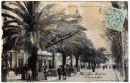 Ajaccio - Avenue Du 1er Consul  (précurseur) - Ajaccio
