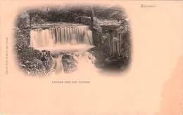 88 - Bussang - Cascade Près Des Sources - Bussang