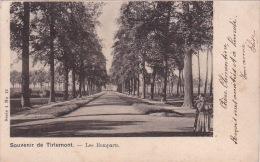 Souvenir De Tirlemont 108: Les Remparts 1902 - Tienen
