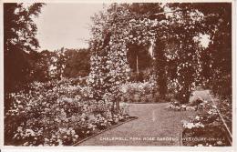 PC Westcliff-on-Sea - Chalkwell Park Rose Gardens - 1923 (3545) - Southend, Westcliff & Leigh