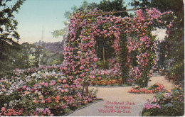 PC Westcliff-on-Sea - Chalkwell Park Rose Gardens - 1932 (3546) - Southend, Westcliff & Leigh