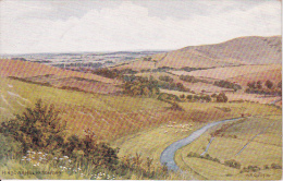 PC Seaford - Hindover Hill (3547) - England