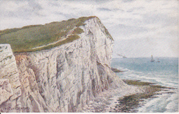 PC Seaford - The Cliff (3548) - England