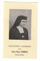 Zuster Maria FIDENTIA (Maria Adriana Van Der Voort) Congregatie H. Hart Maria Berlaar Poppel 1920 Veijle Denemarken 1963 - Imágenes Religiosas