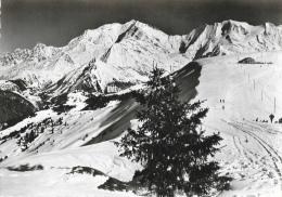 Le Mont-d'Arbois - Panorama Sur Le Mont-Blanc - Carte CAP Non Circulée - France