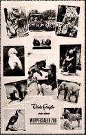 ! Ansichtskarte 1959 Wuppertal Zoo , Tiger, Eisbär, Bären, Elefant - Wuppertal