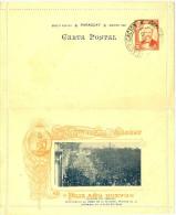 """LAC5 - PARAGUAY  EP CL ILLUSTREE """"FELIZ AÑO NUEVO"""" 2c OBLITEREE 3/1/1901 - Paraguay"""