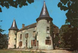 LE POIRE SUR VIE - Le Château De La Métairie (XVe S.) - Edit: Artaud Frères - Poiré-sur-Vie