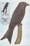 S. TOME E PRINCIPE  1983  Birds  TOME - GAGA  Maximum Card # 55823 - Songbirds & Tree Dwellers