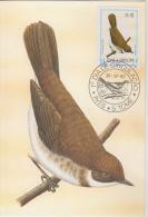 S. TOME E PRINCIPE  1983  Birds  OLHO GROSSO  Maximum Card # 55821 - Songbirds & Tree Dwellers