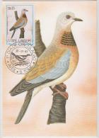 S. TOME E PRINCIPE  1983  Birds  CURUCUCO  Maximum Card # 55817 - Songbirds & Tree Dwellers