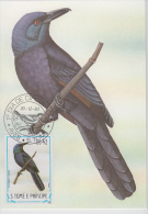 S. TOME E PRINCIPE  1983  Birds  PASTRO  Maximum Card # 55829 - Songbirds & Tree Dwellers