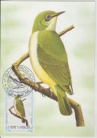 S. TOME E PRINCIPE  1983  Birds  TCHINLINTCHILI  Maximum Card # 55833 - Songbirds & Tree Dwellers