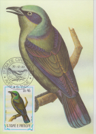 S. TOME E PRINCIPE  1983  Birds  PAPA FIGO  Maximum Card # 55830 - Songbirds & Tree Dwellers