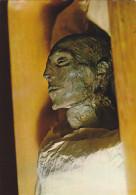 AFRIQUE,EGYPTE,EGYPT,LE CAIRE,CAIRO,tombeau,tombe Des Pharaons,MUSEUM,KAIRO,MOM I,CADAVRE,PHOTO LEYNERT ET LANDROCK 297 - Le Caire