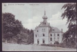 Environs De HAVELANGE - Château De LIBOIS  // - Ohey