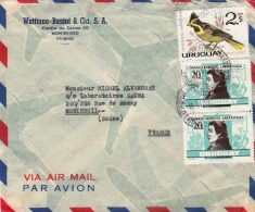 URUGUAY 195? - 3 Fach Frankierung Auf LP-Brief, Montevideo > Montreuil - Uruguay