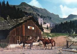 (D)  74  Flaine  Porte Du Desert Blanc  Le Vieux Chalet D'alpage  Centre Equestre - France