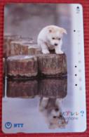 Telefonkarte Asien Japan NTT 1992 Hund Welpe Telephone Card - Chiens