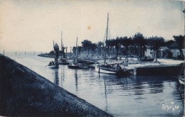 """CPA FRANCE 17 """"MESCHERS / LE PORT """" / EDITION BERGEVIN 6613"""