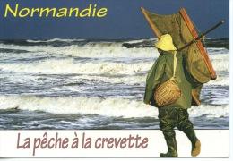 Normandie : La Pêche à La Crevette à Pied Pousseux (photo Pierre Yves Rosparé) - Fishing