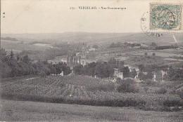 Verdelais 33 - Panorama / Viticulture - Verdelais