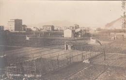 CHIAVARI-GENOVA-SCOGLI 360-VIAGGIATA 1906-ORIGINALE D´EPOCA- - Genova (Genoa)
