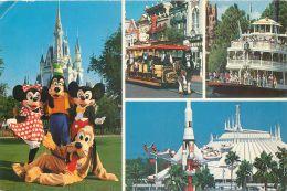 Disneyworld, Florida, USA Postcard Used Posted To UK 1987 Stamp #1 - Disneyworld