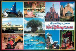 Disneyworld, Florida, USA Postcard Used Posted To UK 2008 Stamp - Disneyworld