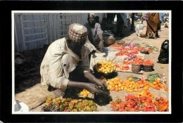 Ali Buda Selling Tomatoes In Gusau, Zamfara State, Nigeria Postcard - Nigeria