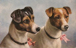 ILLUSTRATEURS  - CHIENS - Dogs