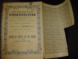 """Action De Capital""""Grands établissements Bruxellois D'horticulture""""Bruxelles 1922 - Agriculture"""