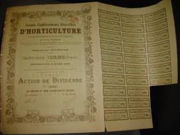 """Action De Dividende""""Grands établissements Bruxellois D'horticulture""""Bruxelles 1922 - Agriculture"""