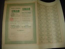 """Dixième Part Fondateur""""Plantations De Semadan Ou Simadan""""La Haye  1913 Très Bon état. - Agriculture"""