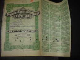 """Part Fondateur""""Produits Et Engrais Chimiques Du Portugal""""Bruxelles 1926 Bon état,annulée,avec Tous Les Coupons - Agriculture"""