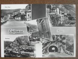 TRIPONZO VEDUTE - Italia