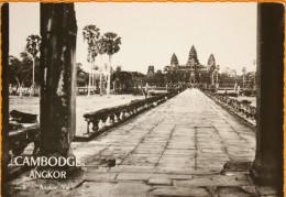 Cambodge - Angkor - Angkor Vat - Photo A. Robillard, Carte N° 6 Non Circulée - Kambodscha