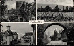 ! Ansichtskarte Ingelheim / Rhein - Ingelheim