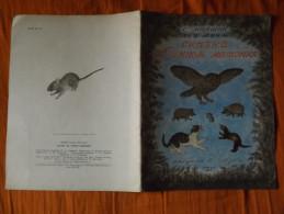 LIVRE - U.R.S.S. - LITTERATURE POUR ENFANTS - ILLUSTRE - 1962 - C. MAPAWAK - 16 PAGES - Livres, BD, Revues