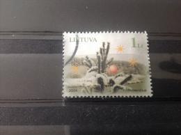 Litouwen / Lithuania - Kerstmis (1) 2004 - Lithuania