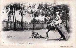 TUNISIEN - La Fantasia - Krieger Auf Pferd, Am Boden Liegender Gegner, Orig.Karte 1900? - Tunisia