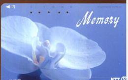 NTT MEMORY - Fiori