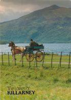 Jaunting Car And Lakes Of Killarney, Co Kerry, Ireland Postcard - Kerry